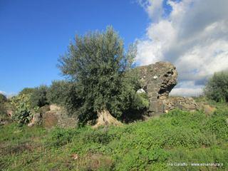 Acquedotto romano Scalilli: 439 visite da giugno 2018