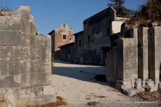 Basilica del Murgo: 502 visite da giugno 2018