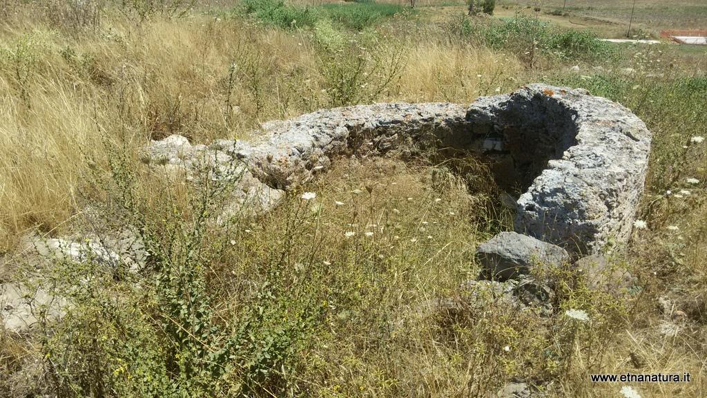 Castellito