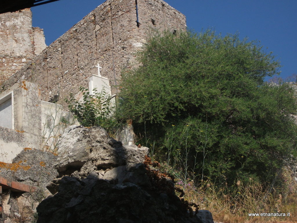 Castello_Forza_Agro