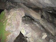 Grotta Acqua Vitale: 1342 visite da giugno 2018