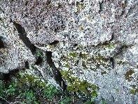 ../foto/all/Grotta Corruccio - 20100402 025