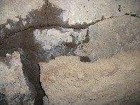 ../foto/all/Grotta Corruccio - 20100402 055