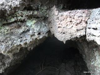 Grotta Marsal: 9 visite oggi