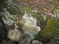 Grotta Micio Conti