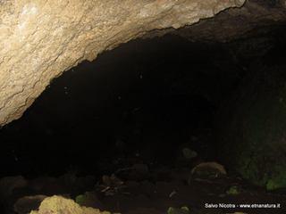 Grotta Piano Cavoli: 481 visite da giugno 2018