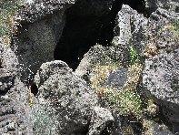Grotta di Serra Pizzuta: 1655 visite da giugno 2018