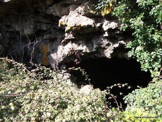 Grotta di monte Dolce: 7 visite oggi