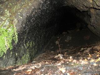 Grotta monte Zappinazzo: 1352 visite da giugno 2018