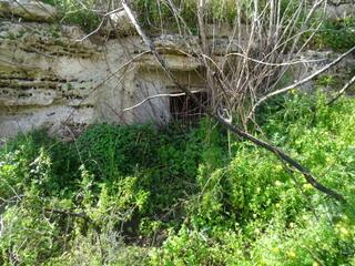 Grotte Castellucciane Ossena