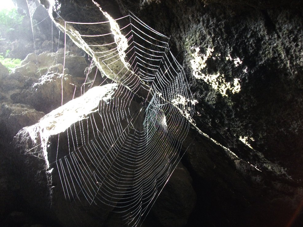 Grotte_delle_Immacolatelle