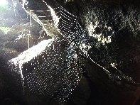Grotte delle Immacolatelle: 1991 visite da giugno 2018
