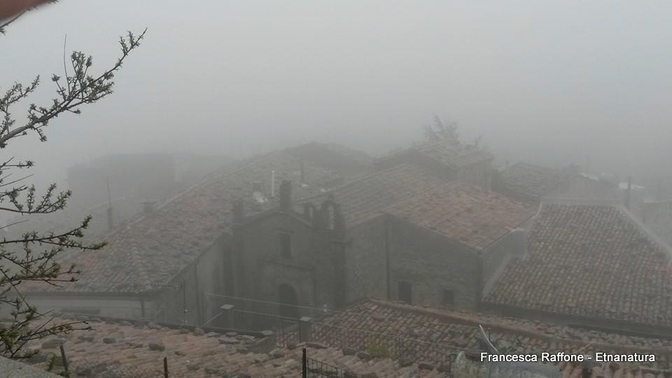 Montalbano Elicona: 802 visite da giugno 2018