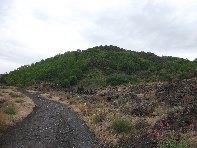 Monte Arcimis: 1324 visite da giugno 2018