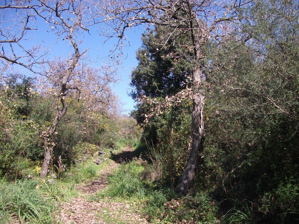 Monte_Ceraulo
