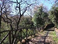 Monte Ceraulo: 506 visite nel 2020