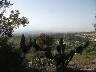 Monte Ferro: 176 visite da giugno 2018