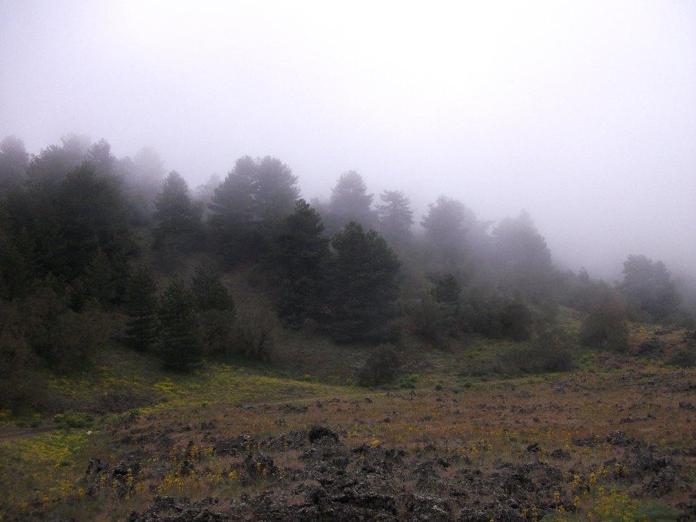Monte Gallo Galvarina