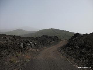 Monte Gemmellaro: 170 visite nel mese di Febbraio