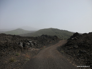 Monte Gemmellaro: 650 visite nel 2019