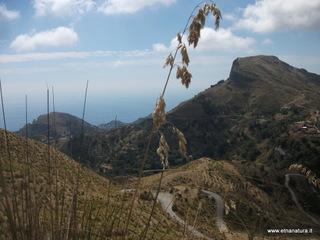 Monte Lapa: 1480 visite da giugno 2018