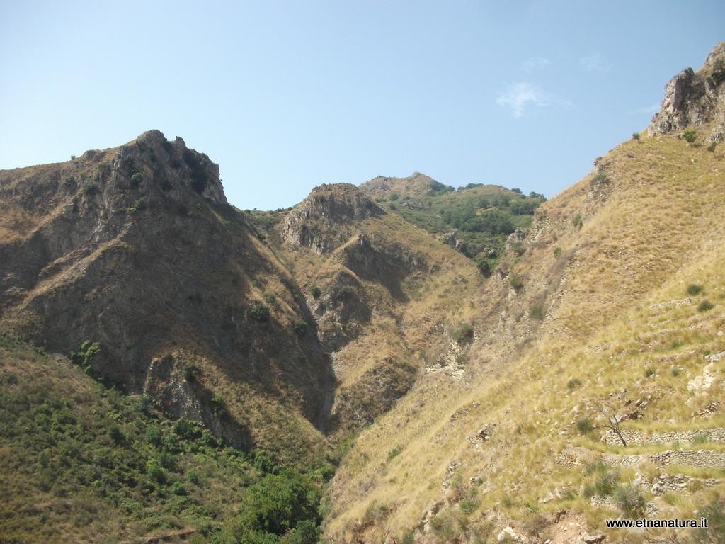 Monte Naturi