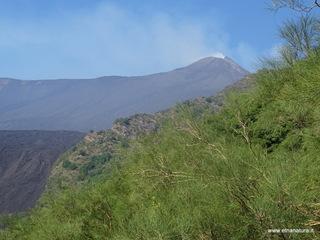 Monte Rinatu: 1380 visite da giugno 2018