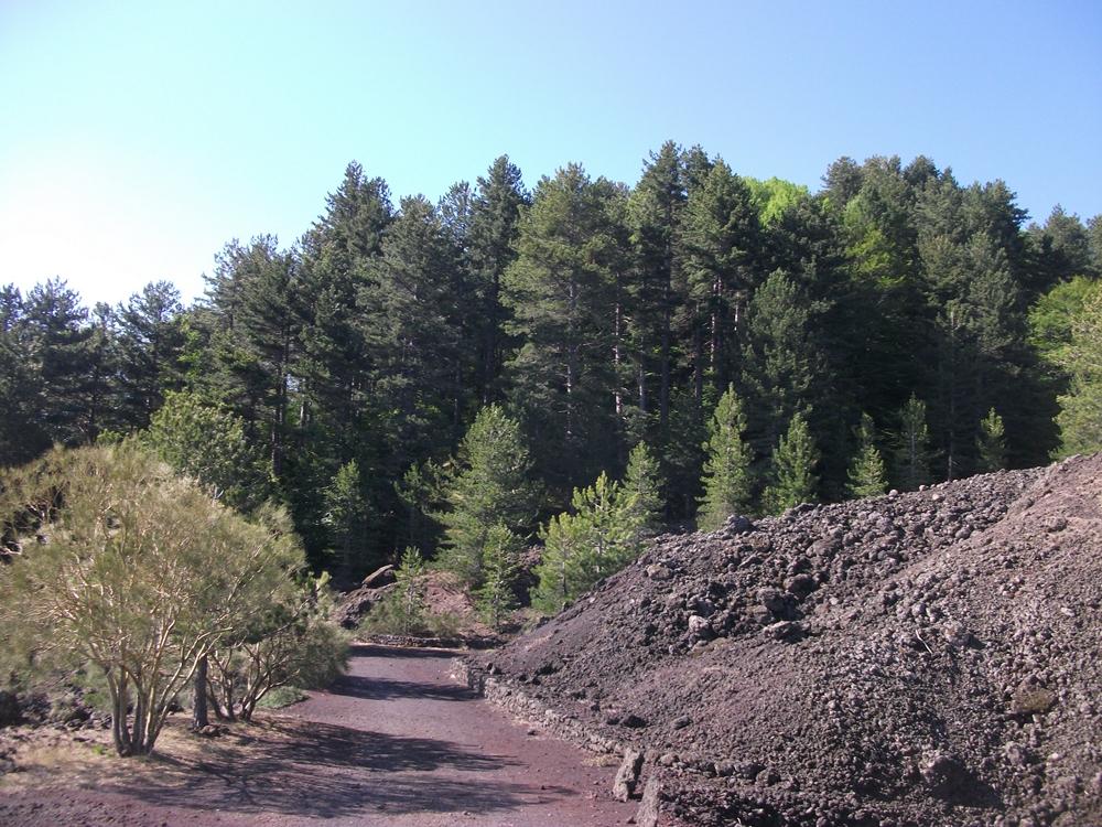 Monte Rossello