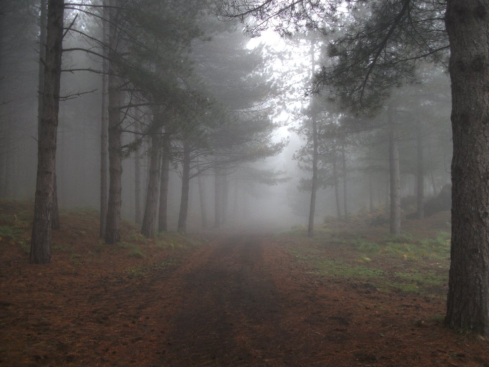 Monte_Spagnolo