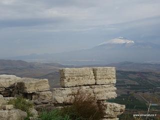 Monte Turcisi: 6 visite oggi