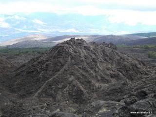 Monte dei morti: 384 visite da giugno 2018