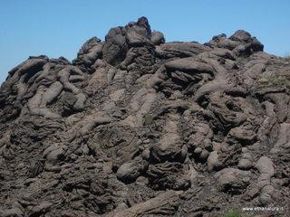 Monte dei morti: 735 visite da giugno 2018