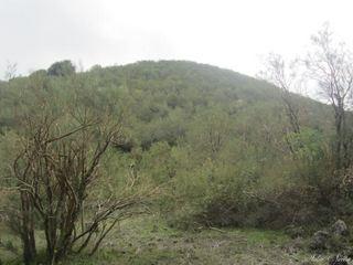 Monte santa Maria: 2 visite oggi