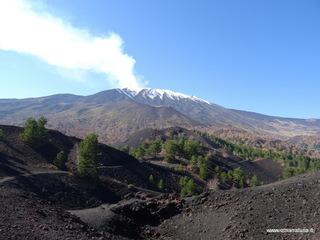Monti Sartorius: 8 visite oggi