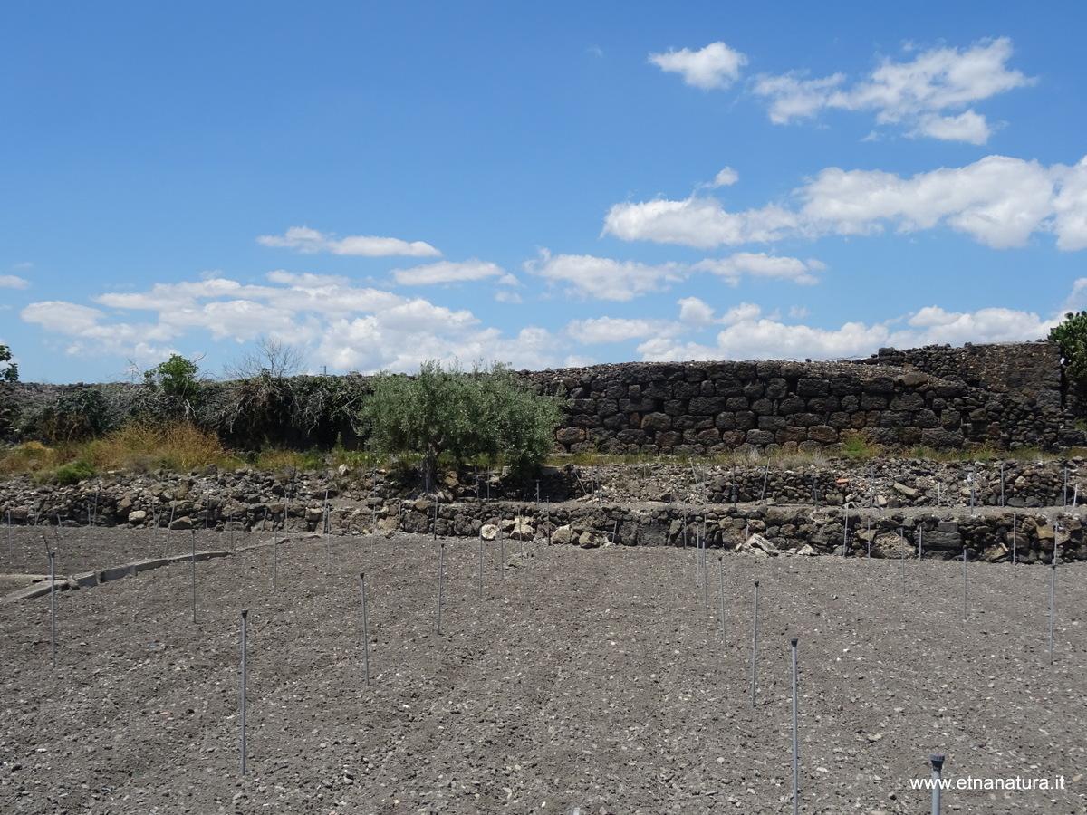Mura Dionigiane Adrano