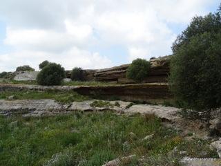 Palazzelli: 1799 visite da giugno 2018