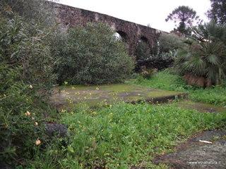 Parco Gioeni: 1541 visite da giugno 2018