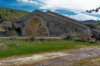 Ponte Failla: 9 visite oggi