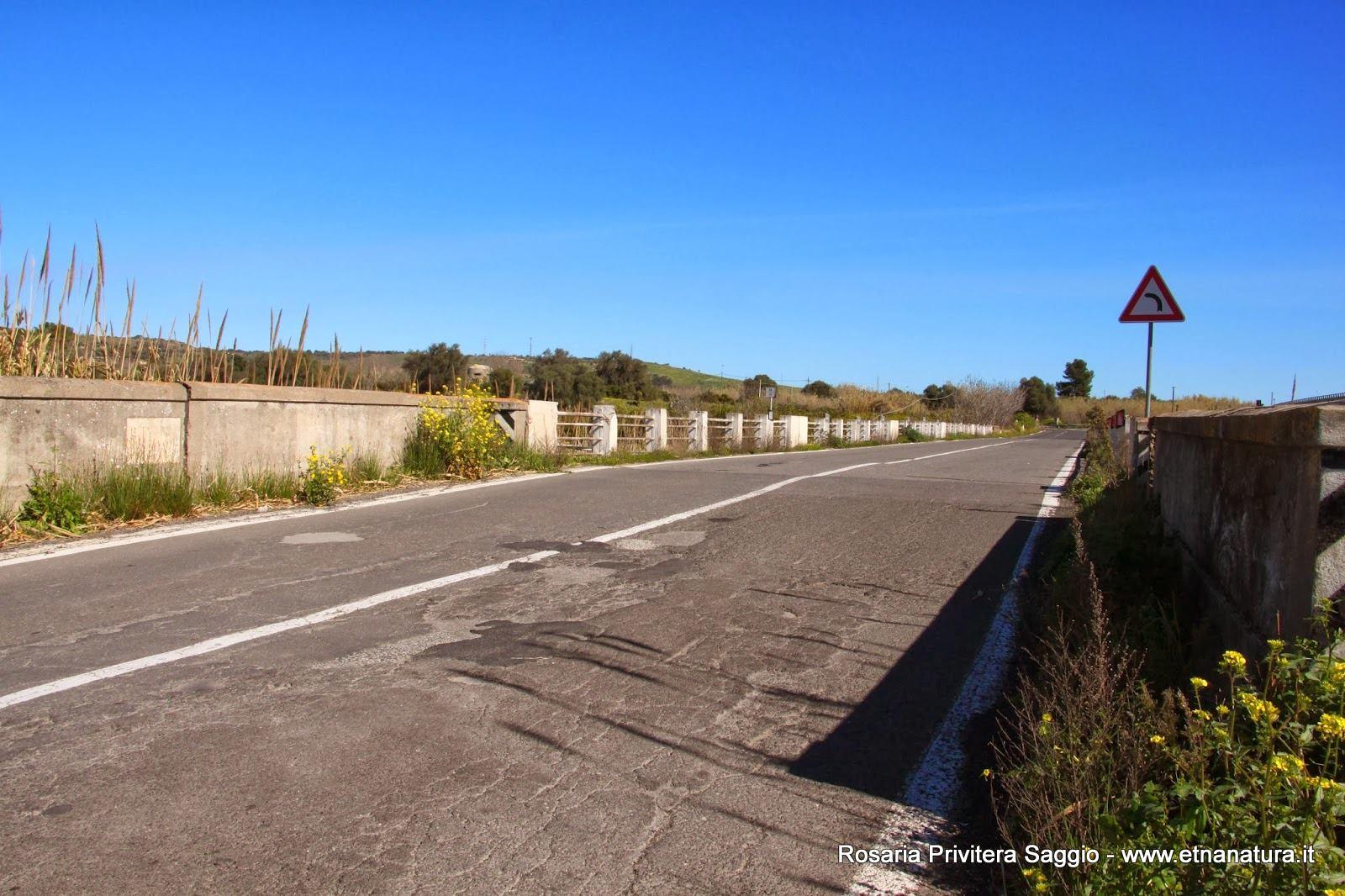 Ponte_dei_malati
