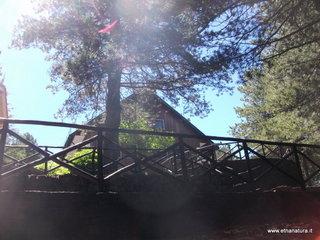 Rifugio san Giovanni Gualberto: 494 visite nel 2020
