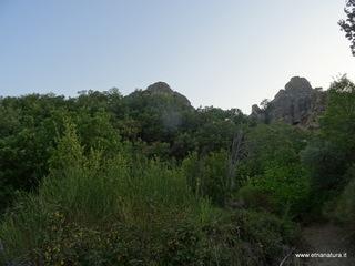 Rocca Pizzicata: 2933 visite da giugno 2018
