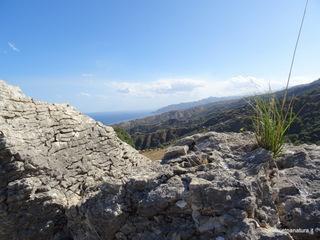 Rocca di Buticari: 104 visite da giugno 2018