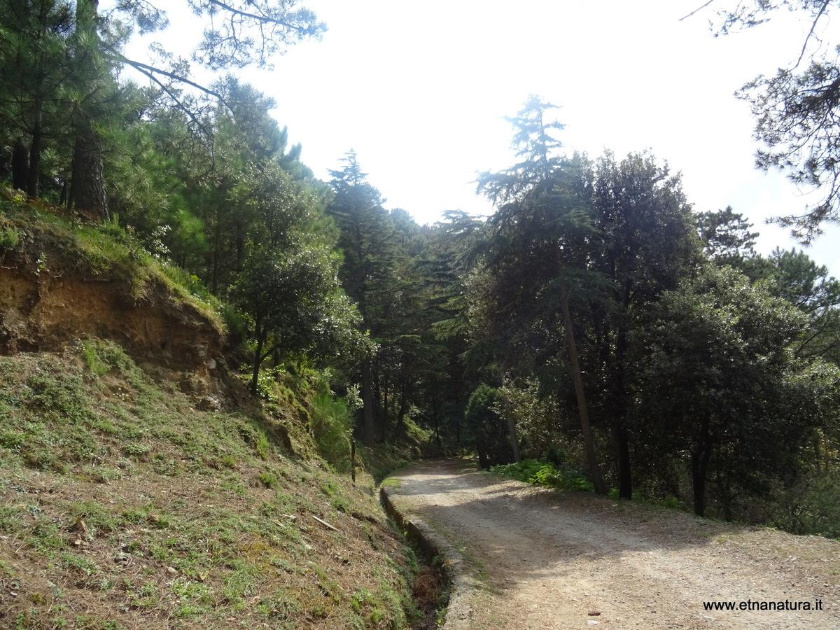 Sentiero Zirio