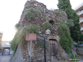 Torre del Baglio: 3 visite oggi
