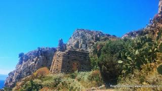 Torre del Palombaro: 1 visite oggi