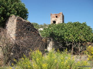 Torre di Casalotto: 1358 visite da giugno 2018