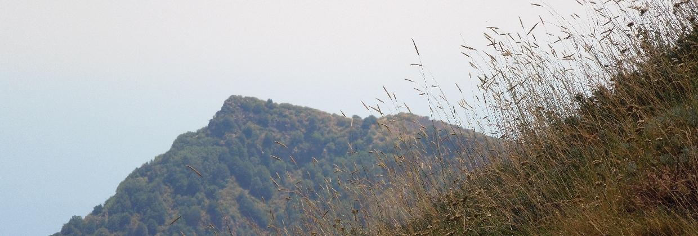 Help - Proteggiamo l'Etna